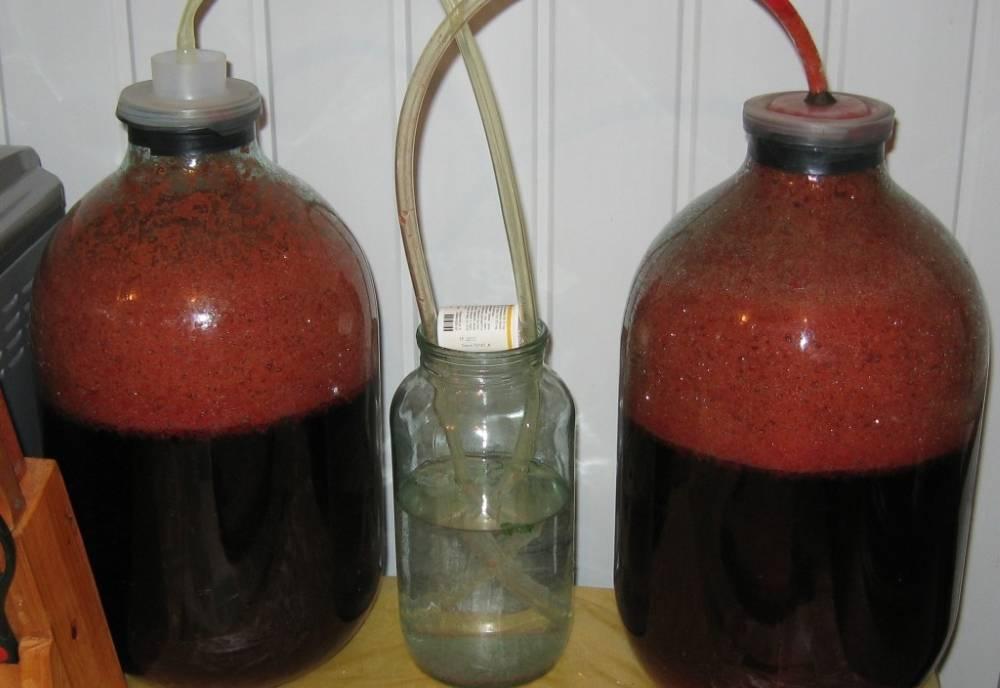 Хранение домашнего вина в пластиковых бутылках — life-sup.ru