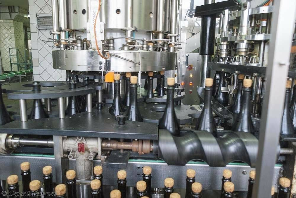 Производство шампанского, подробное описание процессов