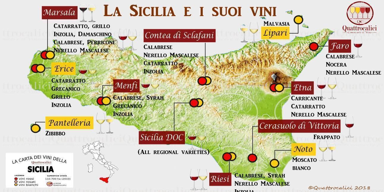 Вина италии - названия сортов и классификация лучших итальянских белых и красных видов - на сайте наливай-ка!