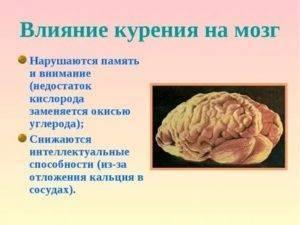 Влияние табакокурения на кровоток и снабжение кровью головного мозга