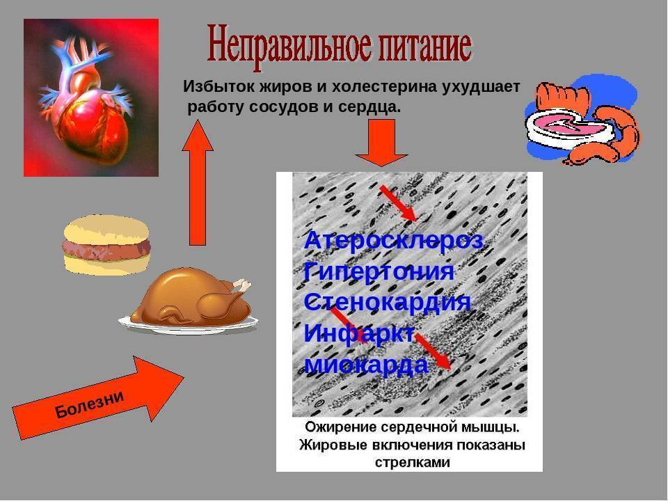 Как курение влияет на уровень холестерина
