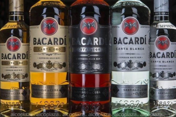Ром бакарди (bacardi): виды и особенности популярной марки