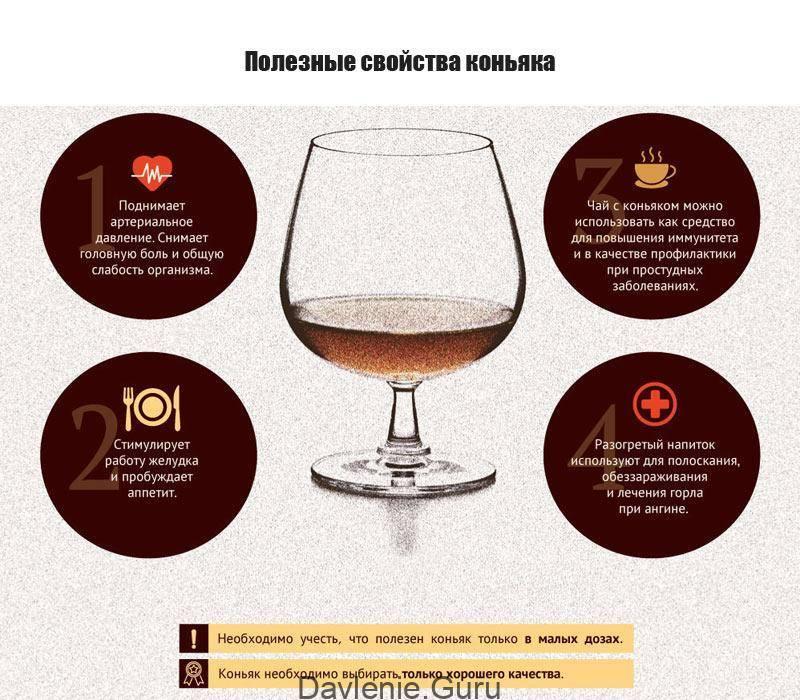 Польза алкоголя: чем полезно спиртное для организма человека в малых дозах, в чем заключается вред?
