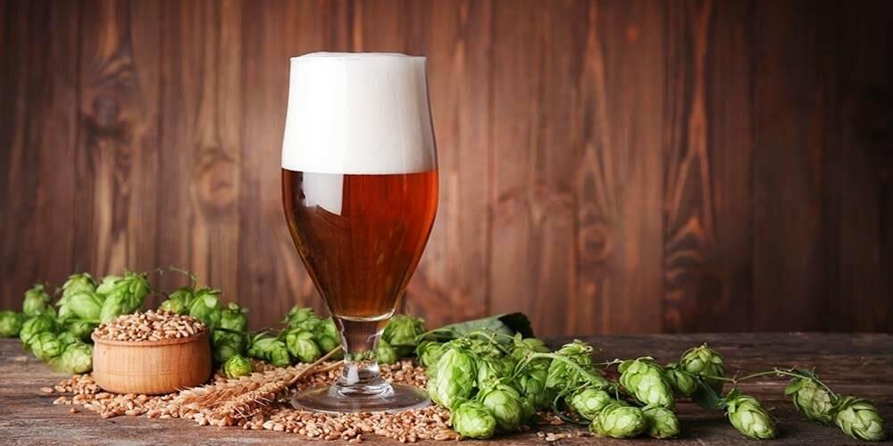 Самогон из пива: проверенные рецепты приготовления браги из просроченного и свежего пенного напитка, нюансы перегонки