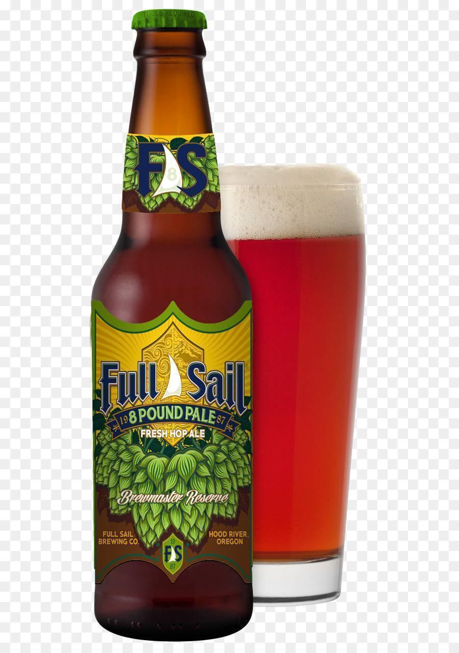 Обзор пива: пейл-эли, мёд и ipa