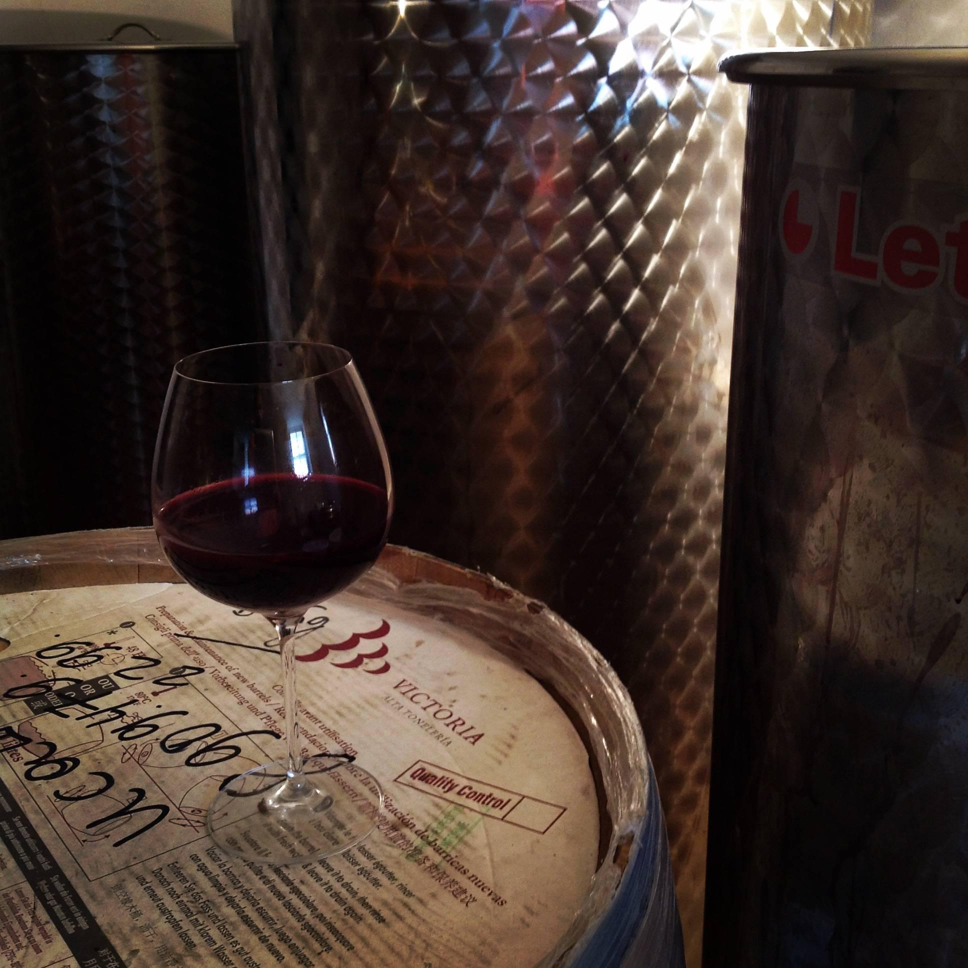 Как убрать горечь из вина в домашних условиях