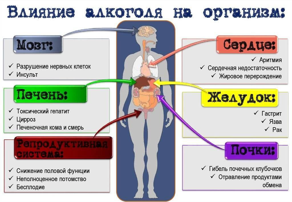 Алкоголь при остеохондрозе шейного, грудного, поясничного отдела