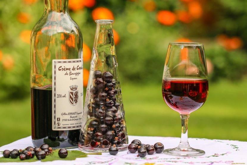 Вино из черной смородины в домашних условиях: простой рецепт, без дрожжей, быстрый рецепт, из варенья