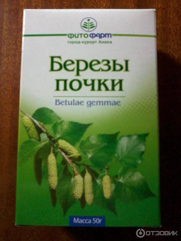 Настойка на березовых почках: применение на водке