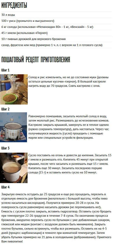 Домашнее пиво из хмеля - лучшие рецепты от gemrestoran.ru