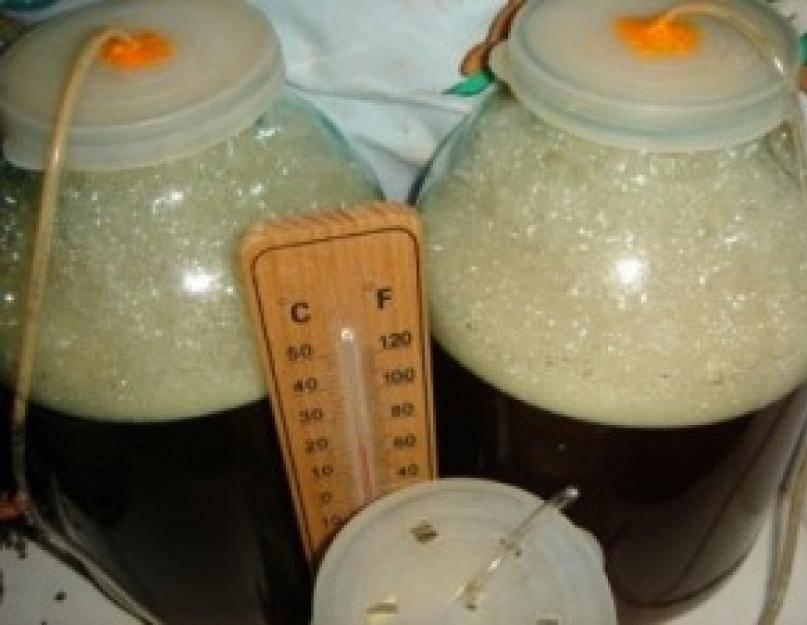 Как можно ускорить брожение сахарной браги