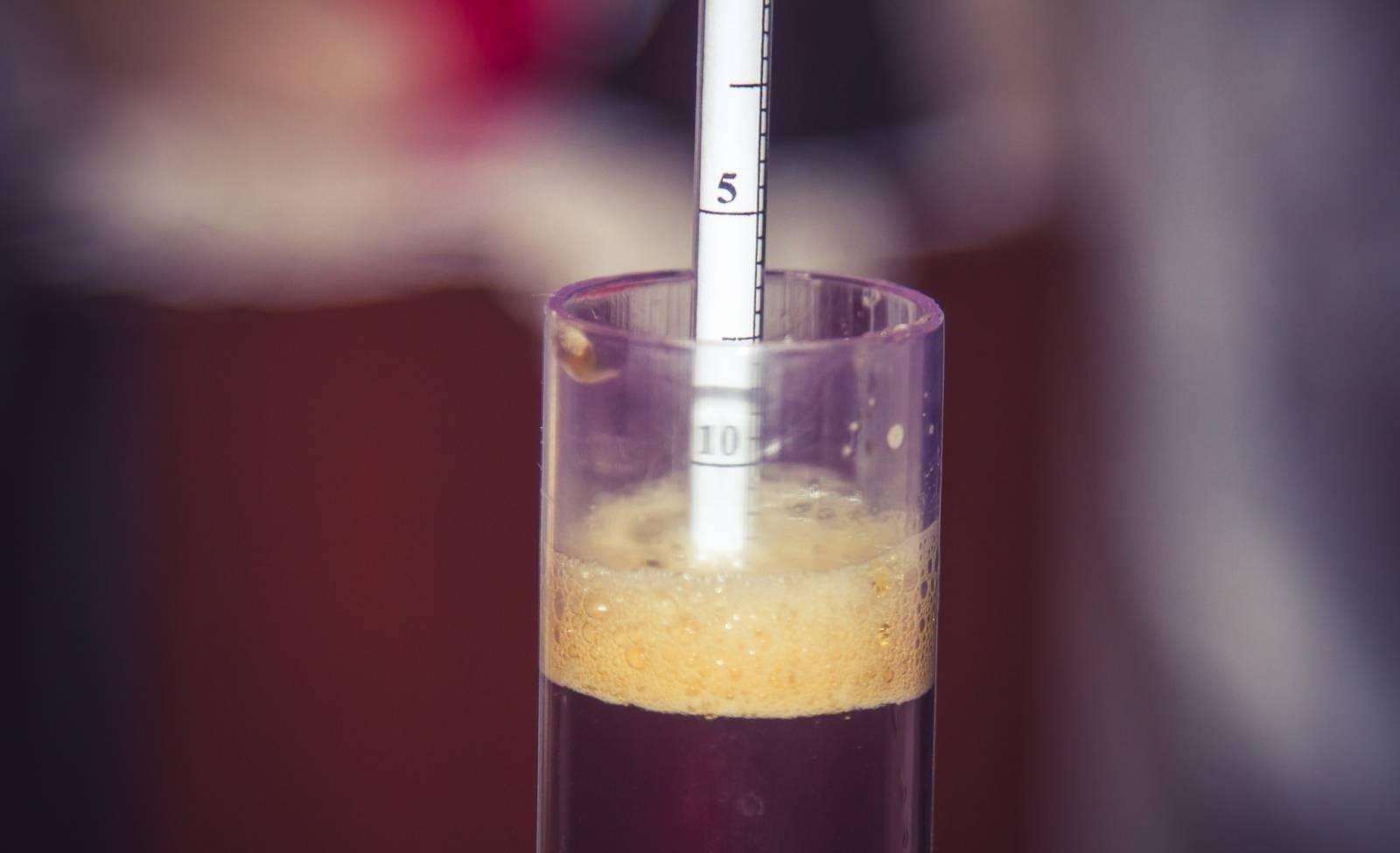 Что такое плотность пива?