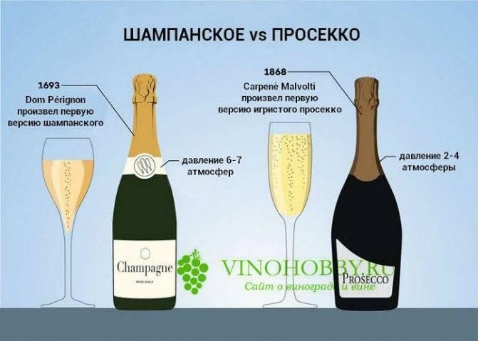 Гристое вино просекко- особенности, отличия от шампанского
