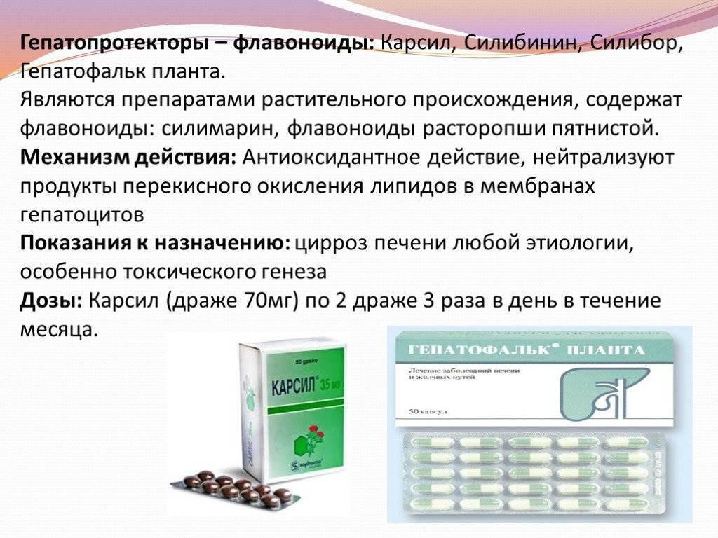 Лекарства от цирроза печени: синтетические и растительные препараты