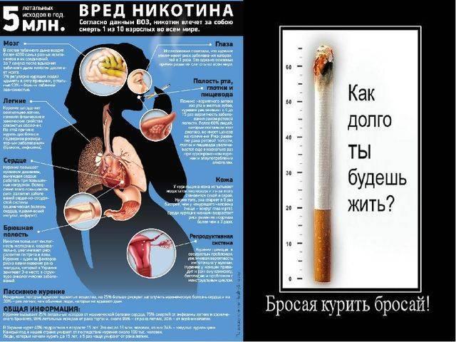 Почему после курения хочется в туалет по большому и что делать в данном случае