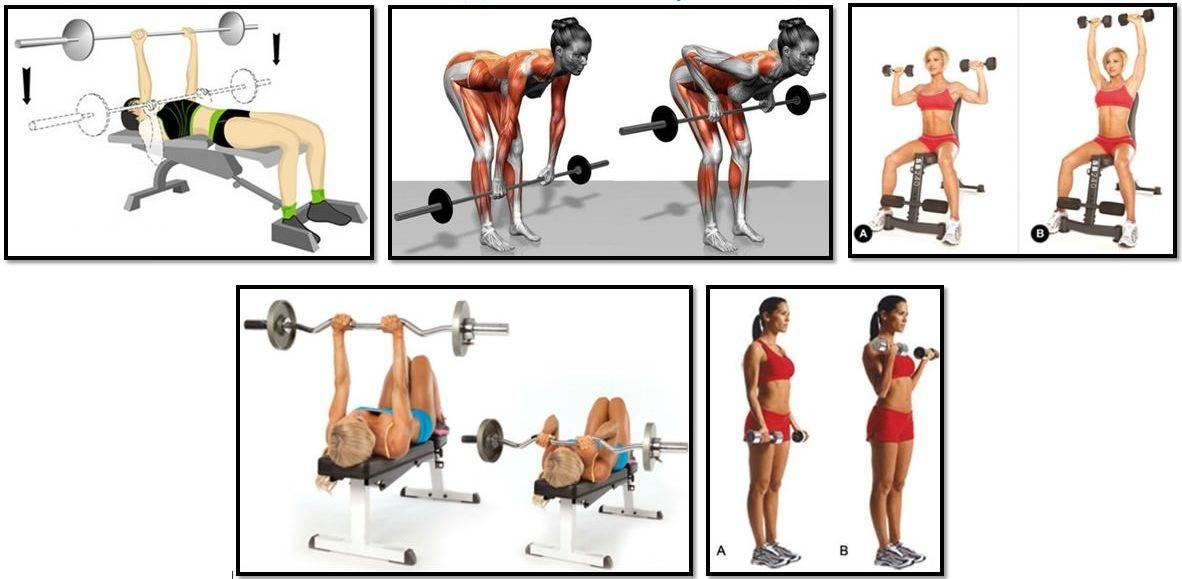 Упражнения для похудения живота в тренажерном зале для женщин