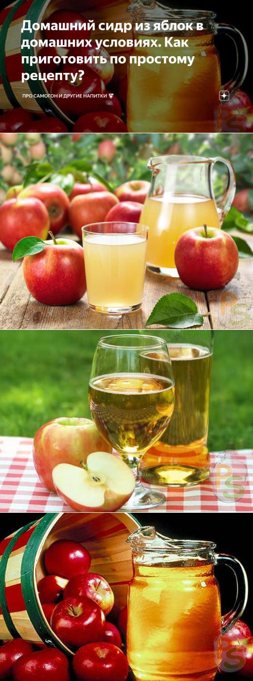 Рецепты яблочного сидра, газирование напитка в домашних условиях