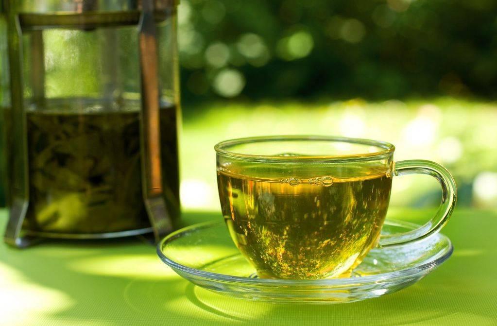 Зеленый чай от похмелья или черный. какой чай пить при похмелье