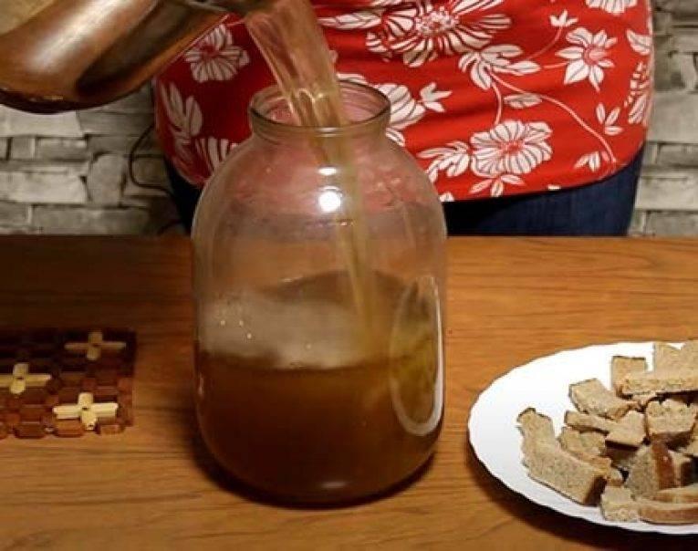 Берёзовый квас – вкусно, быстро и ничего сложного! готовим квас из берёзового сока с сухофруктами, вишней и даже с кофе - автор екатерина данилова - журнал женское мнение