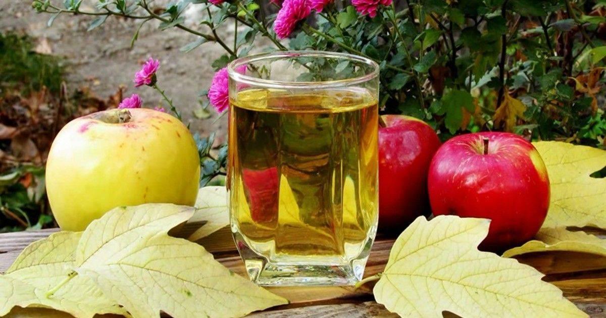 Из каких яблок лучше делать вино