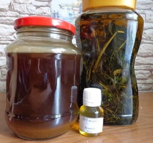 Софора японская настойка: инструкция по применению, рецепт приготовления на водке, спирту, лечебные свойства, противопоказания
