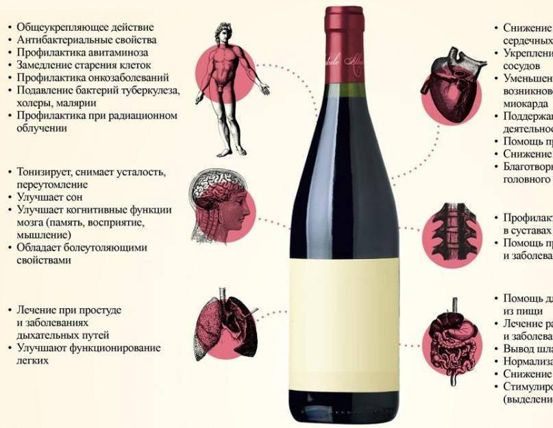 Энотерапия это винотерапия, чем полезны красные вина