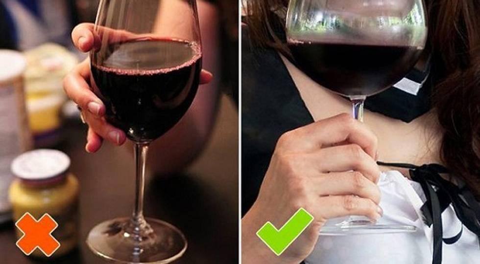 Все о том, как правильно пить вино
