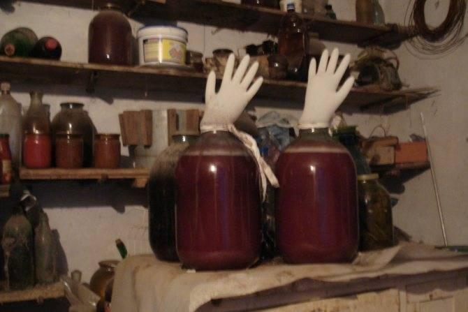 Брожение вина в домашних условиях