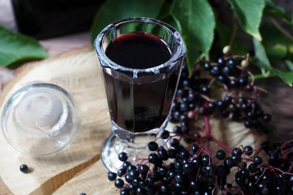 Настойка из черноплодной рябины в домашних услолвиях: 4 рецепта