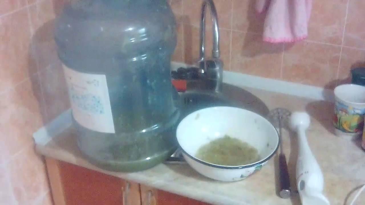 Рецепт приготовления чачи из винограда в домашних условиях, способ изготовления и очистки виноградного напитка