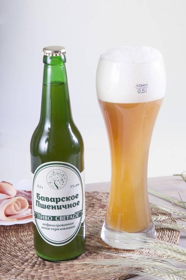 Чем отличается фильтрованное пиво от нефильтрованного