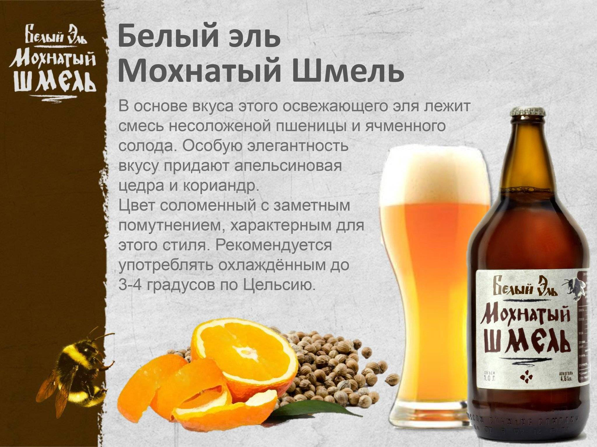 "Эль ""мохнатый шмель"" дегустация   beer deer   яндекс дзен"