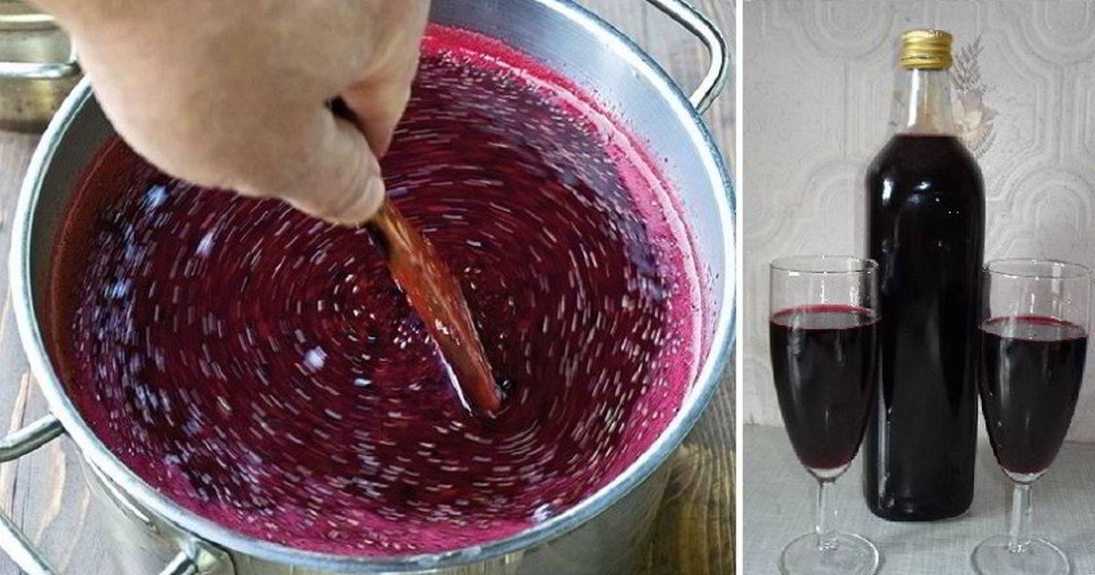 Вино из черной смородины простой пошаговый рецепт приготовления в домашних условиях