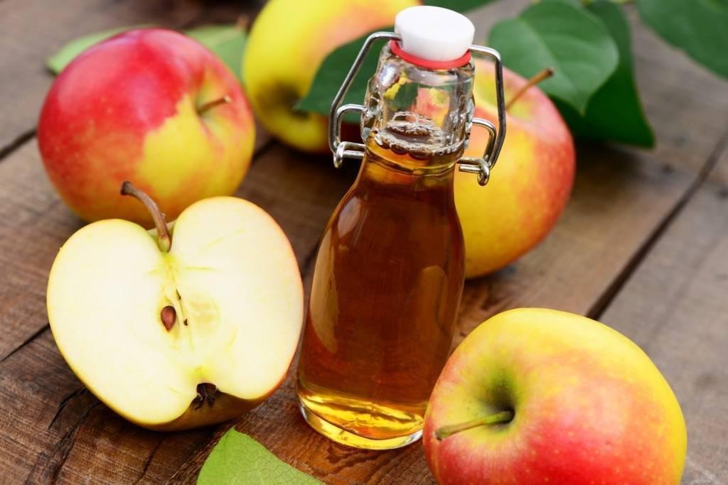 Что такое сидр из яблок? польза и вред яблочного сидра для здоровья человека.