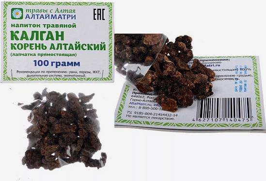 Настойка калгана: применение, польза и вред, рецепт из корня на водке, самогоне