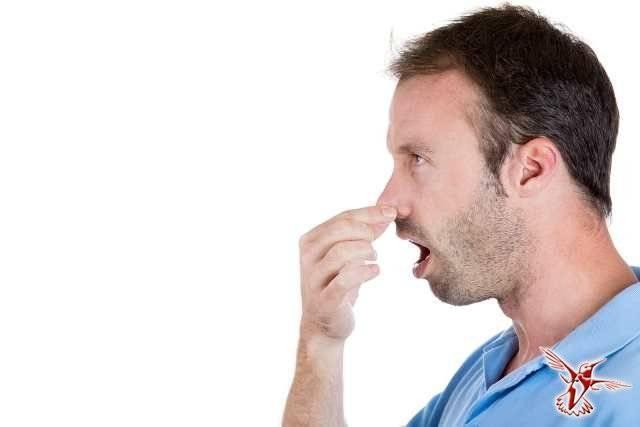 Почему вяжет во рту – причины, симптоматика, лечение