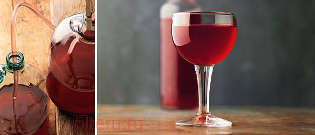 О фильтрации вина 1 - базовые понятия | filtrace