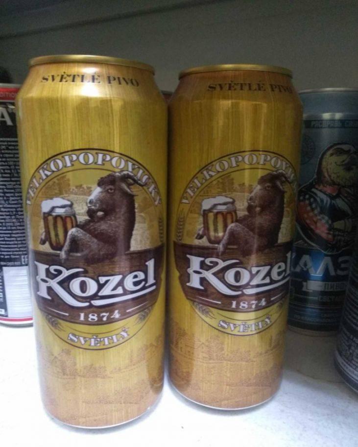 Пиво козел (Kozel) - 95 фото и видео описание особенностей производства пива