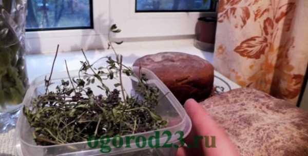 Самогон, настойки и наливки на травах, корнях и пряностях. | лучшие рецепты | пряности и специи