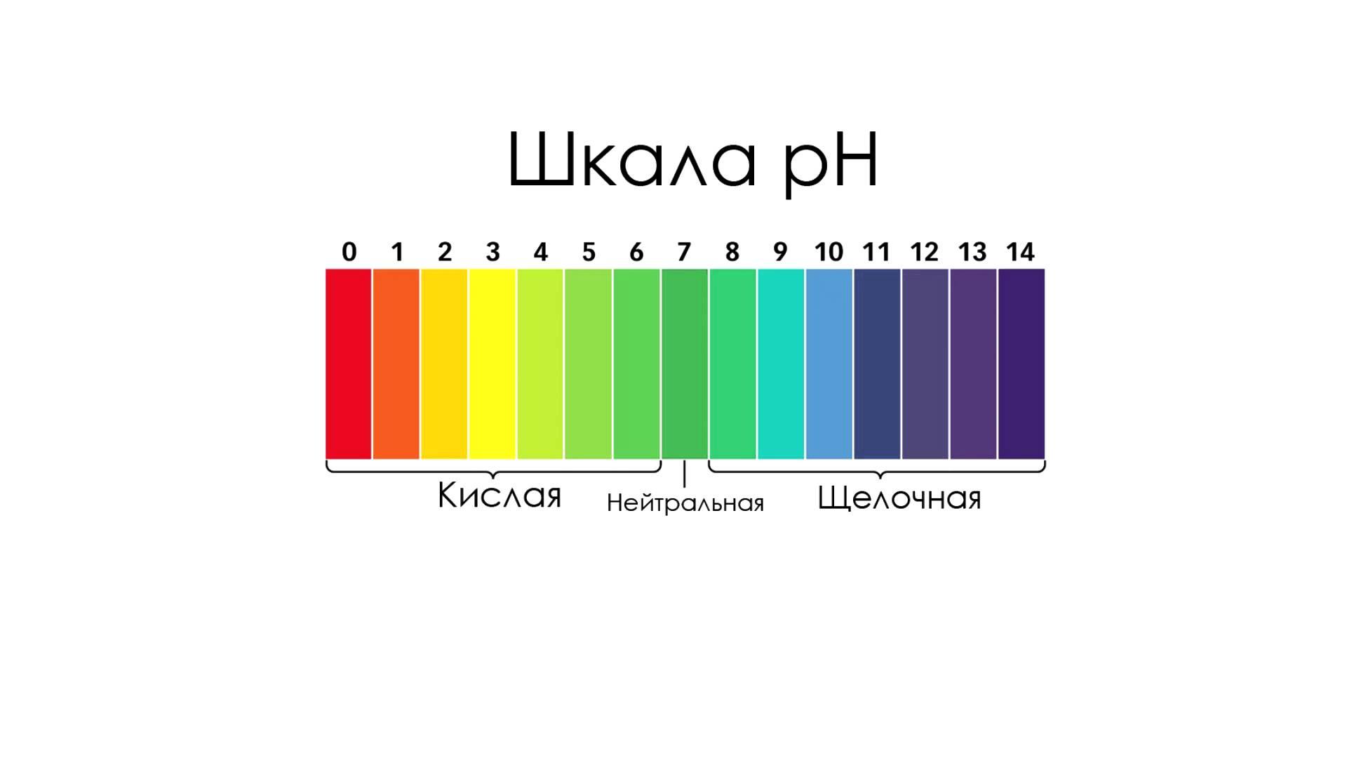Нормальная кислотность желудка: сколько равен ph