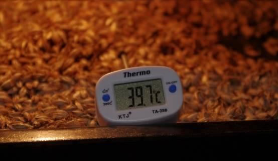 Температурные паузы в пивоварении