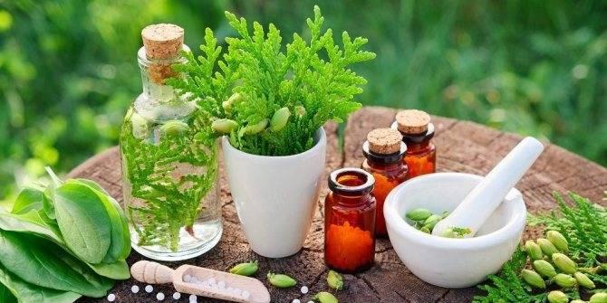 Как провести очищение организма от шлаков и токсинов в домашних условиях: самые простые способы, рецепты