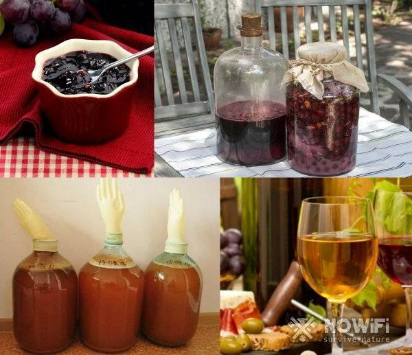 Как фильтровать вино в домашних условиях