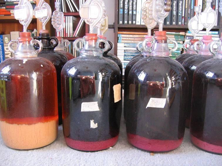 Секреты приготовления домашнего вина