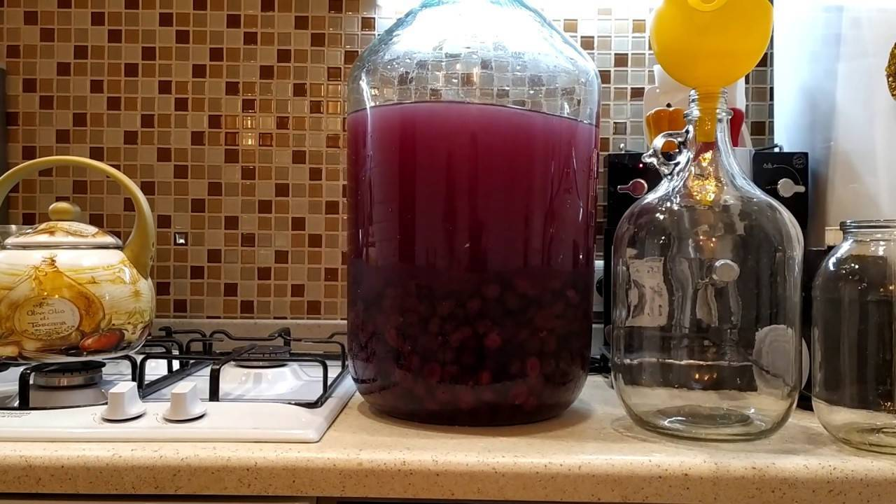Грейпфрутовое вино ? в домашних условиях – 3 рецепта