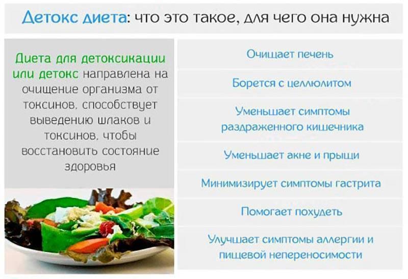 Очищение организма от шлаков и токсинов в домашних условиях :: syl.ru