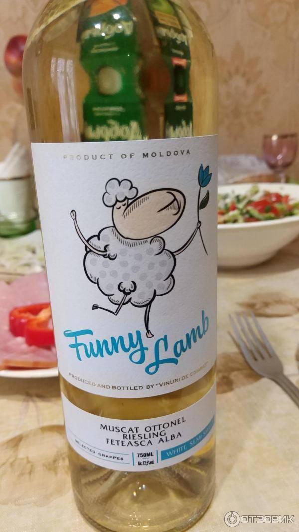 Обзор вина Funny Lamb