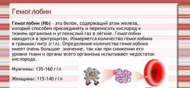 Продукты и лекарства для поднятия гемоглобина