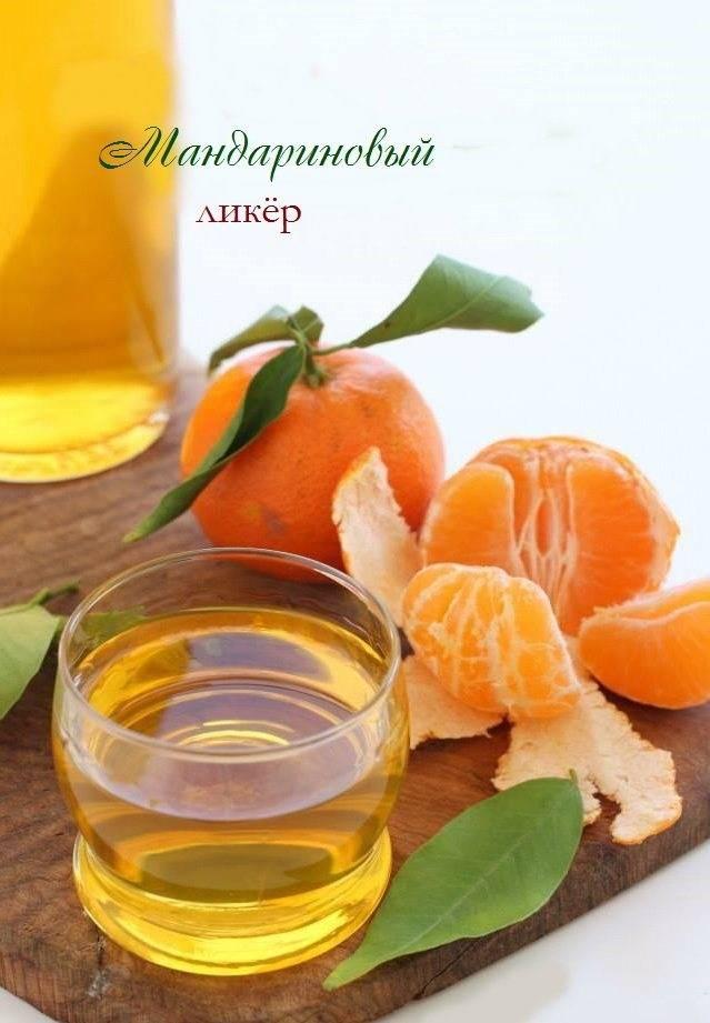 Пять причин полюбить грейпфрут – рецепты грейпфрутовых настоек
