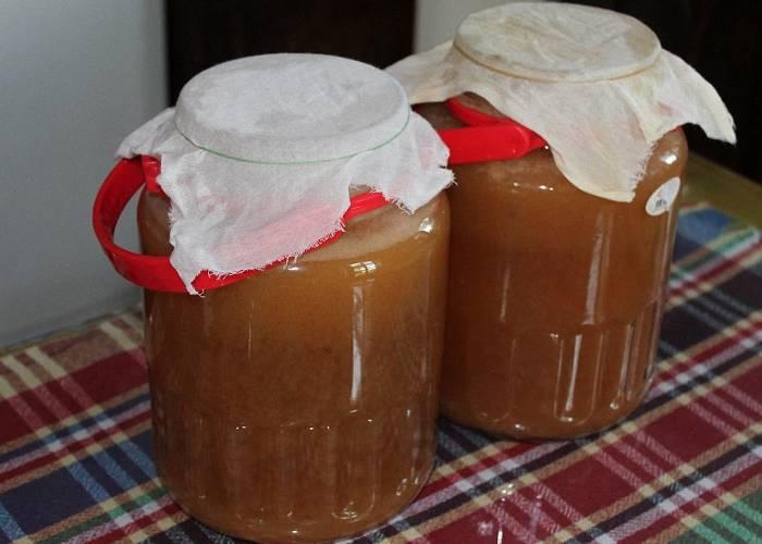 2 самых распространенных рецепта браги на березовом соке